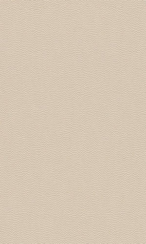 Cosmopolitan Rough Leather Wallpaper 576047