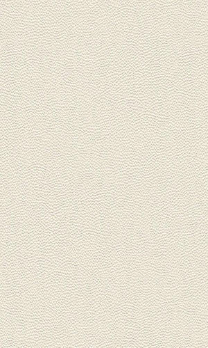 Cosmopolitan Rough Leather Wallpaper 576054