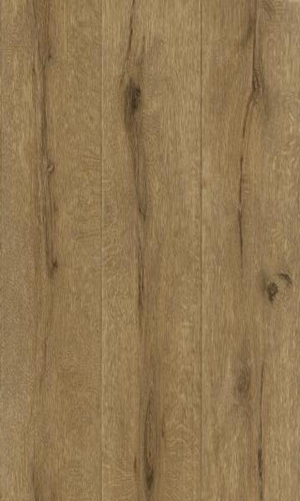 Black Forest  Knotty Wallpaper 514452