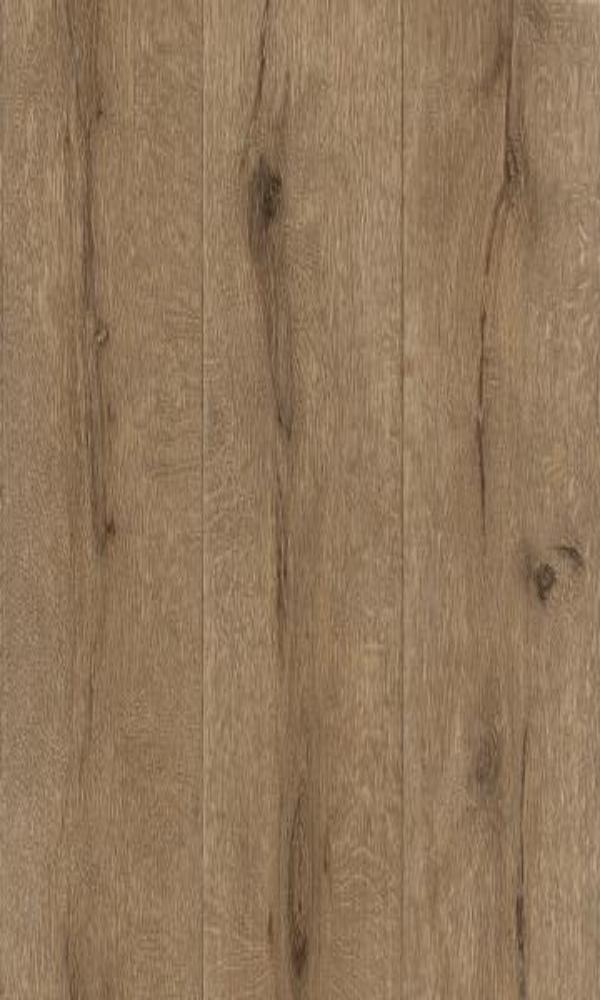 Black Forest  Knotty Wallpaper 514445