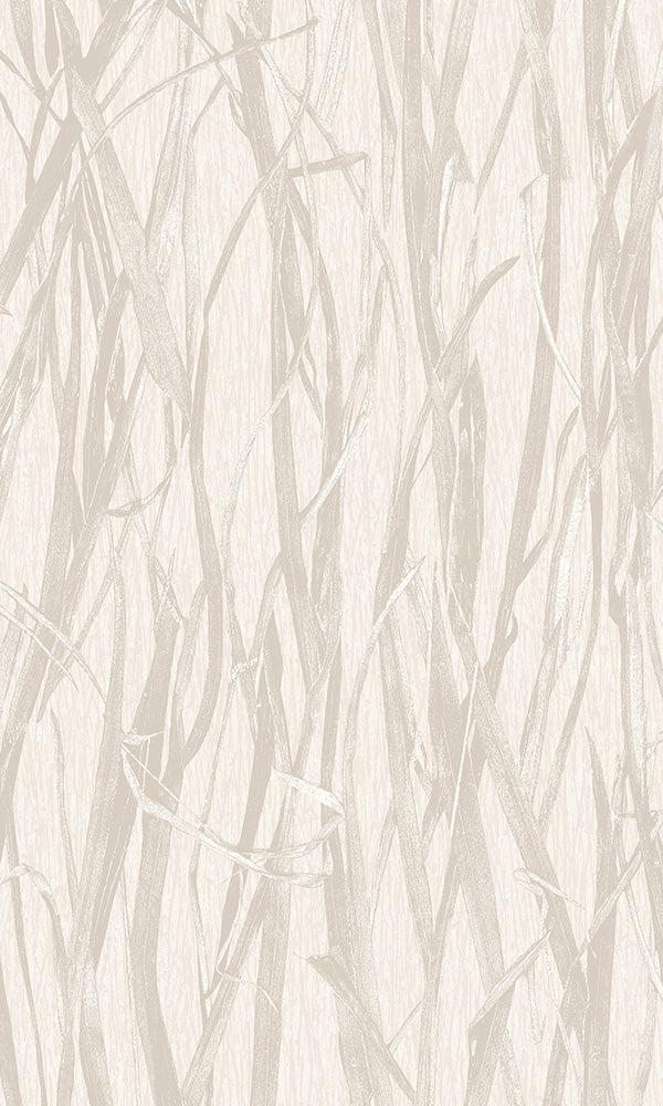Beige Sun Dried Corn Stalks NF3601