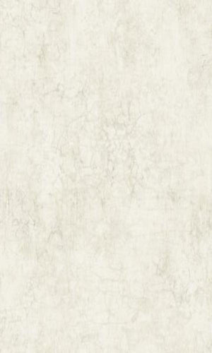 Brockhall Subtle Concrete Wallpaper NH20204
