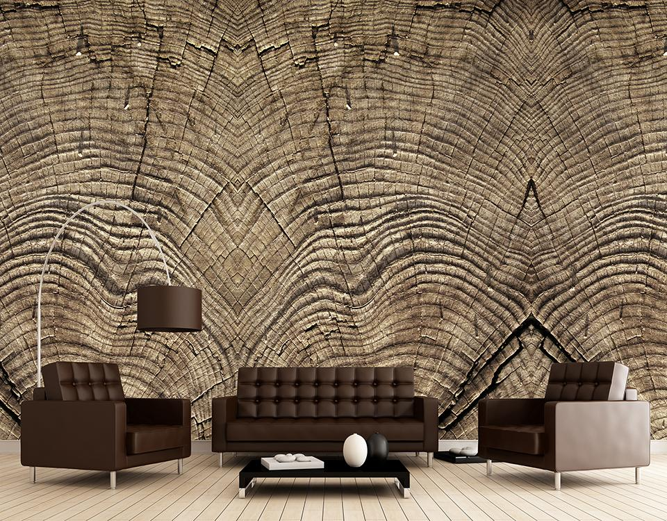 Quattro Tree Rings Wallpaper 457001