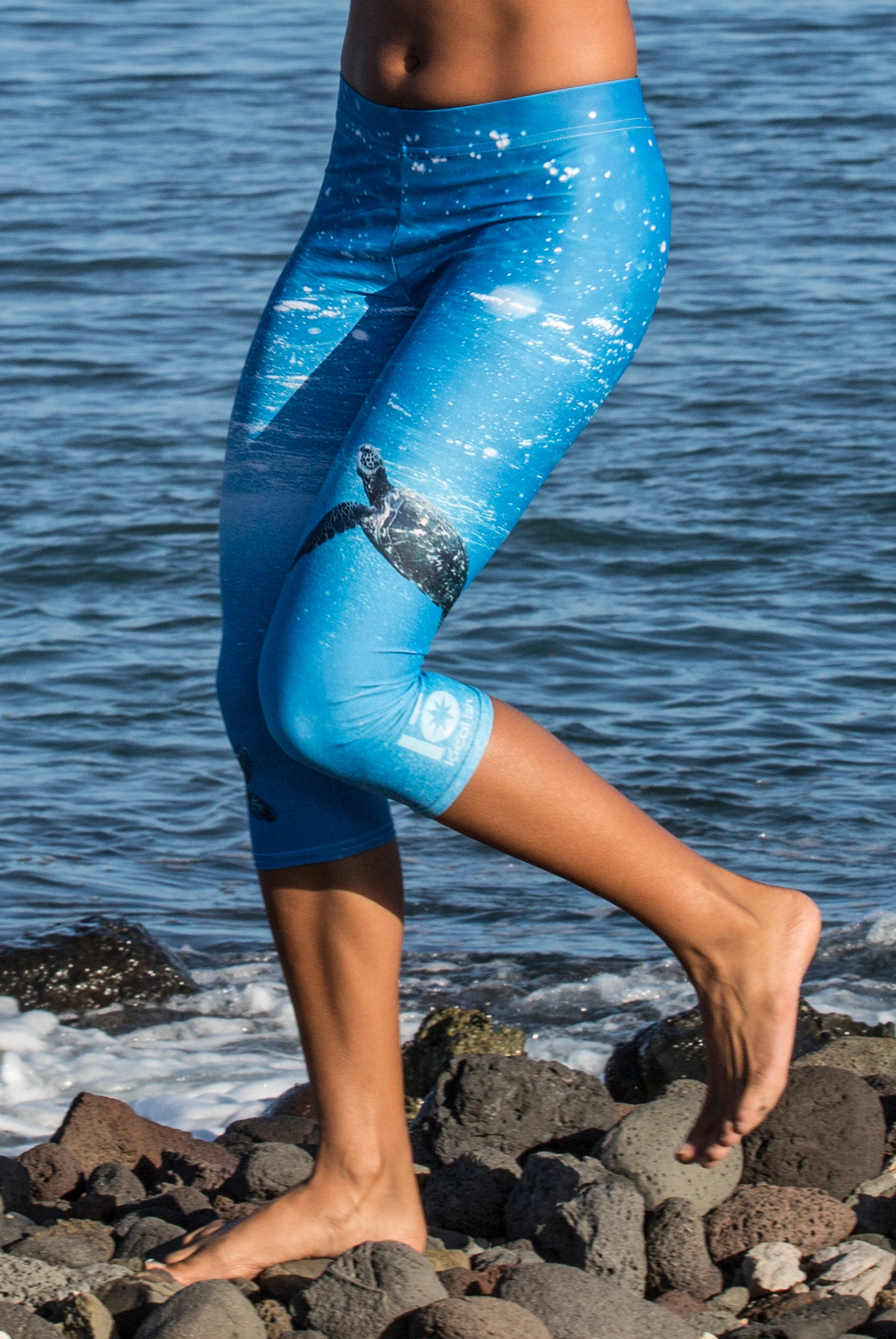 sea turtle capri