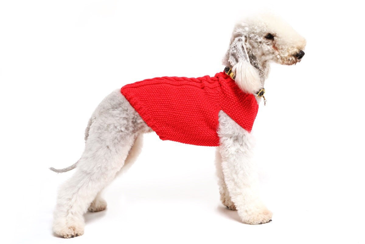 Solid Red Cableknit Dog Sweater