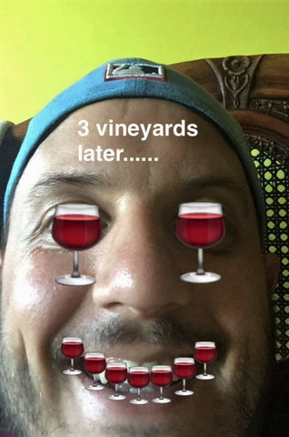 how we feel after 3 vineyards in one day