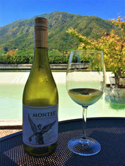 wine tasting at montes vineyard in chile