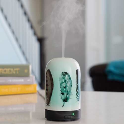 Aroma Diffuser - Feathers