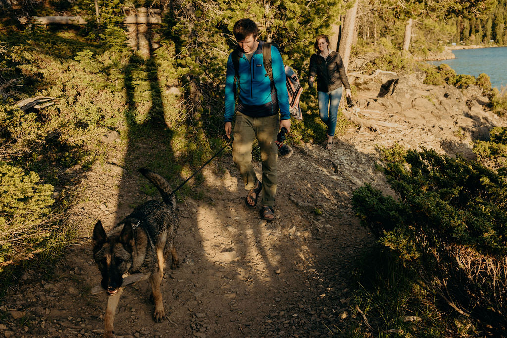 What to Bring on a Hike With Your Dog (Packing List Included)