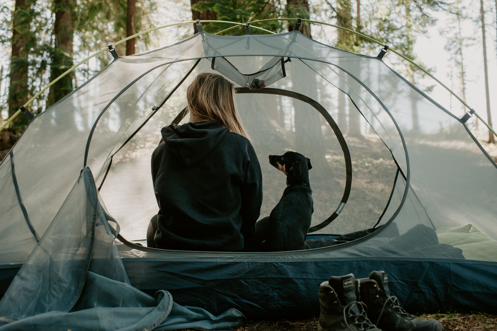 Woman camping with dog