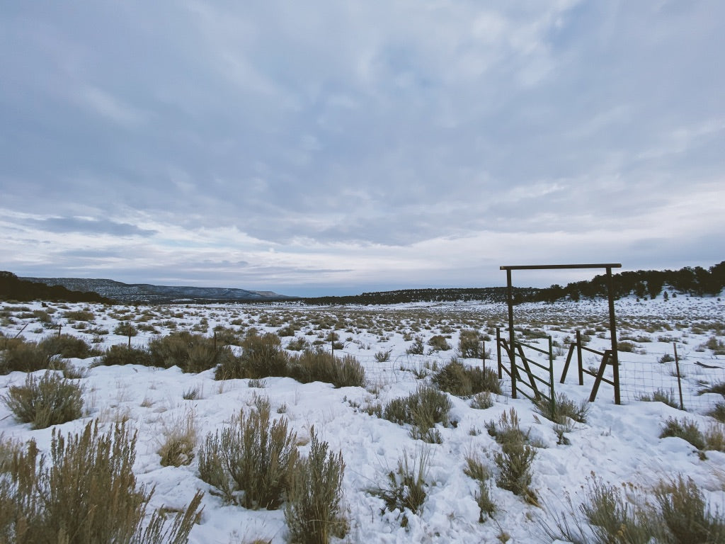 How the Sausage Gets Made: What Goes Into a Successful Elk Hunt (Plus an Elk Sausage Recipe) - Winter Scene