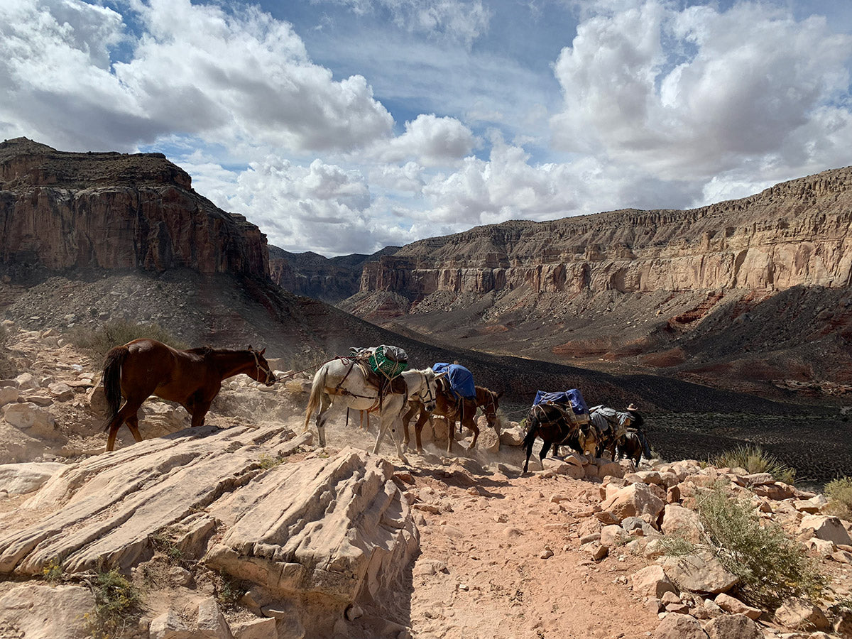 approaching havasupai from the rim of the grand canyon