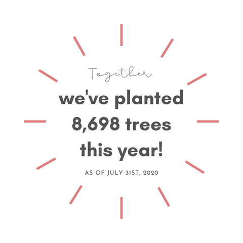 Together, we've planted 8698 trees this year!