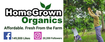 Homegrown Organics (The Home of Purple Corn) : No Minimum Order