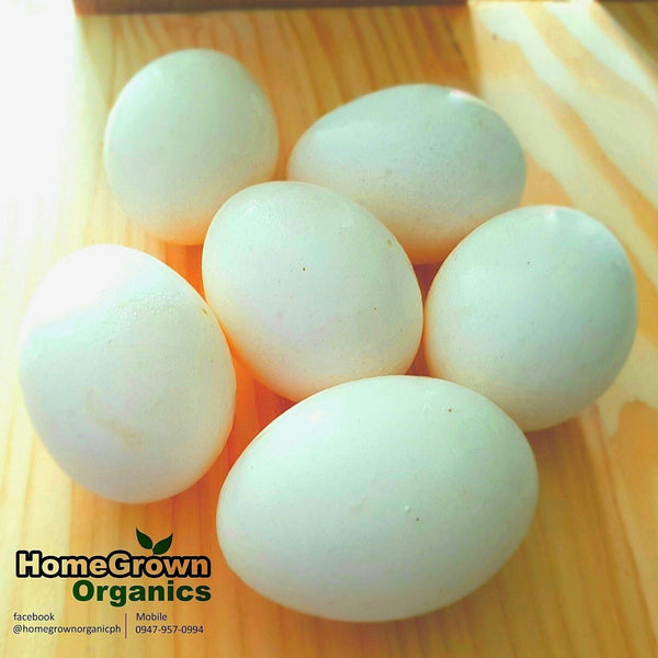 .                  Organic Egg to Shrink Pores and Tighten Skin (Per Dozen)