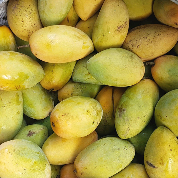 . Tier-2 Mangoes Pico or Carabao (Per 1kg) Homegrown Organics (The Home of Purple Corn) : No Minimum Order