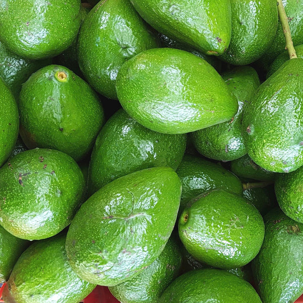 .                   Small Avocado (Per 1kg)