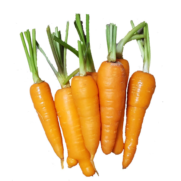 Carrots (Per 250g) Homegrown Organics (The Home of Purple Corn) : No Minimum Order