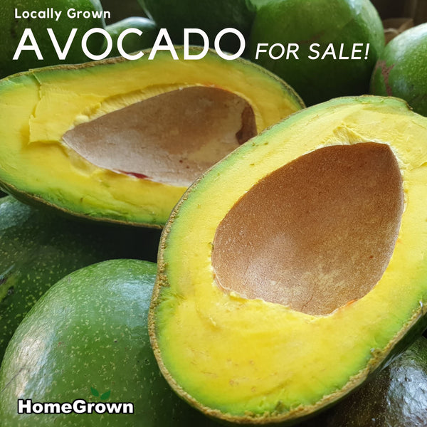 Premium Avocado, Medium-Large Ripe, Ready to Eat (Per 300g) Homegrown Organics (The Home of Purple Corn) : No Minimum Order