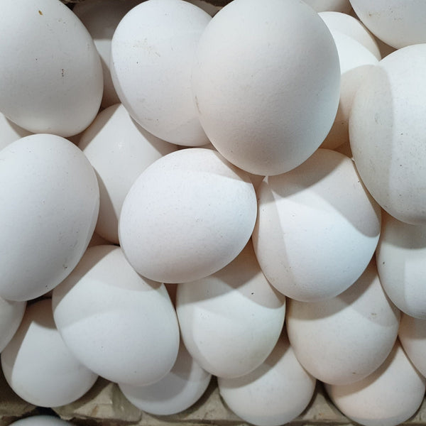 Eggs Medium (per tray, 30 pcs) Homegrown Organics (The Home of Purple Corn) : No Minimum Order