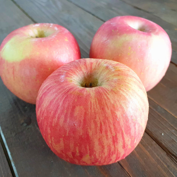 Fuji Apple (per piece) Homegrown Organics (The Home of Purple Corn) : No Minimum Order
