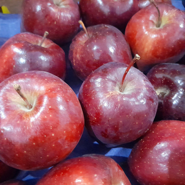 Buy1 Take1 US Red Apples (Total 2pcs) Homegrown: Fresh Food, Groceries, Plants and More!
