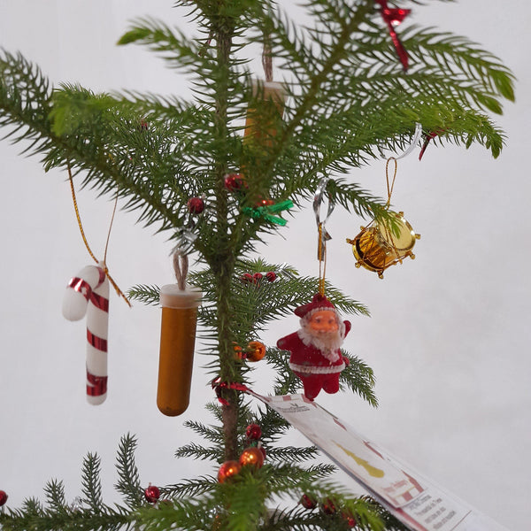 Live Christmas Tree, Decorated,Scented,10inches up (per piece) Homegrown: Fresh Food, Groceries, Plants and More!