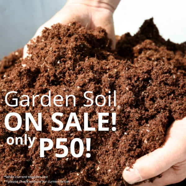 SALE! Garden Soil (per 3 kg) Homegrown: Fresh Food, Groceries, Plants and More!