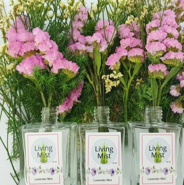 Valentine Promo: Lavender Botanical Diffuser,30ml x 3pcs (total 3pcs) Homegrown: Fresh Food, Groceries, Plants and More!