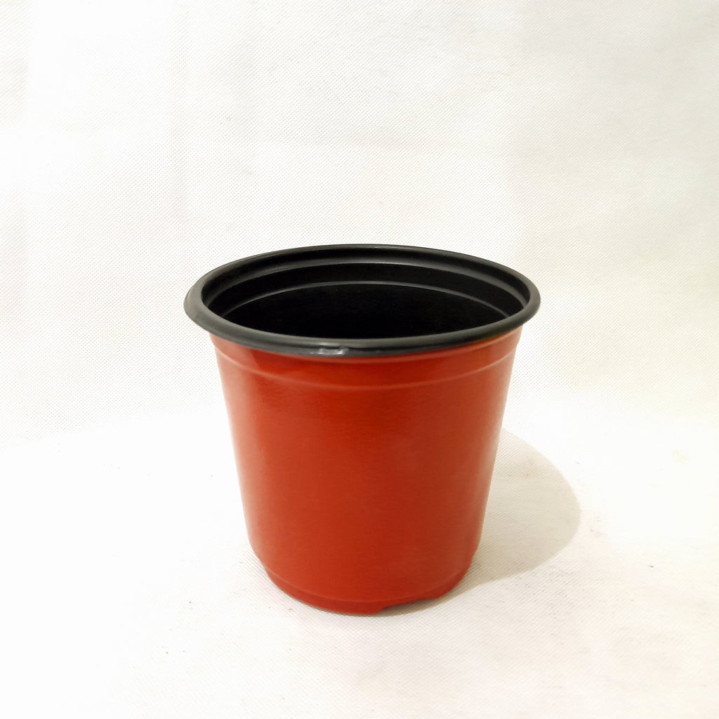 Red Flexi Pot,PVC Material,3 Inches Diameter (per piece) Homegrown: Fresh Food, Groceries, Plants and More!