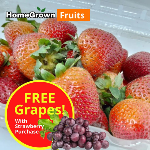 Fiesta Fruit Sale! Strawberry by Driscoll, FREE 100g of Seedless Grapes (per 450g) Homegrown: Fresh Food, Groceries, Plants and More!