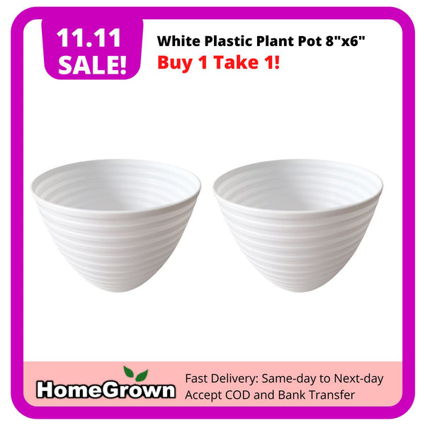 "11.11 Sale! Buy 1 Take 1, White Plastic Plant Pot, 8""x6"" (Total 2 pots) Homegrown: Fresh Food, Groceries, Plants and More!"