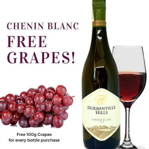 Chenin Blanc Wine, 2018, Durbanville Hills, South Africa, Free 100g Grapes! (750ml) Homegrown: Fresh Food, Groceries, Plants and More!