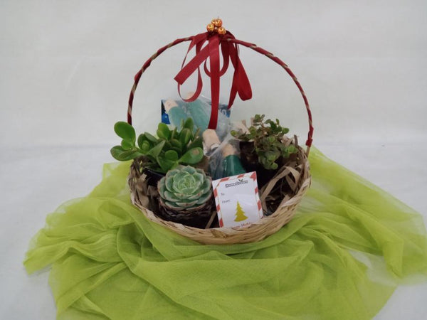 Christmas Gift Set,Succulents and Garden Tools (per basket) Homegrown: Fresh Food, Groceries, Plants and More!