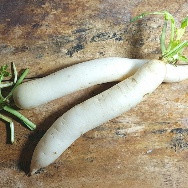 Radish (per 500g) Homegrown Organics (The Home of Purple Corn) : No Minimum Order