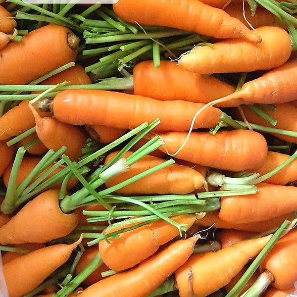 .                                   Organic Carrots for More Radiant Skin (Per 250g)