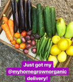 . Read Some Client Reviews Homegrown Organics (The Home of Purple Corn) : No Minimum Order
