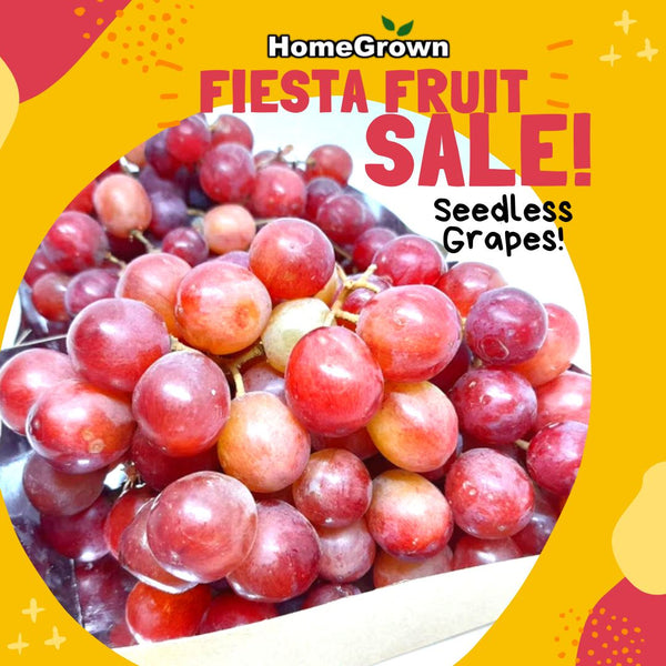 Fiesta Fruit Sale! Buy1 Take1 Seedless Grapes 500g (Total of 2x 500g) Homegrown: Fresh Food, Groceries, Plants and More!