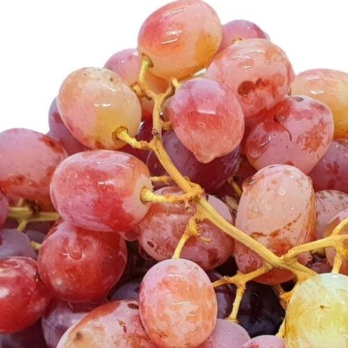 Christmas SALE! Seedless Grapes (Per 250g) Homegrown: Fresh Food, Groceries, Plants and More!