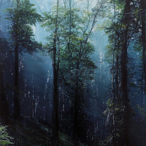 The Blue Forest Ferns, Marco Valencia - A Life With Art