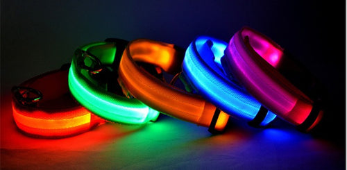 Nylon LED Safety Collar for Dogs