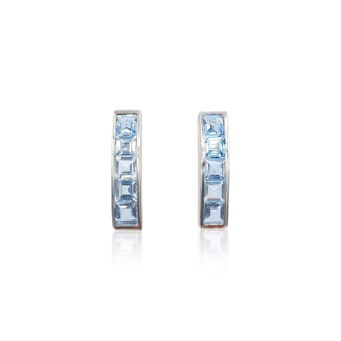 Nadine Collection Earrings