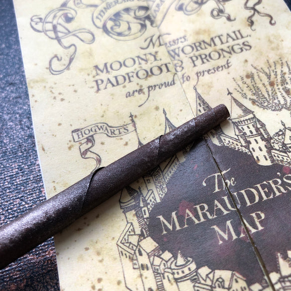 Harry Potter Marauder's Map Canvas