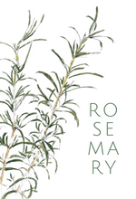 Rosemary greeting card