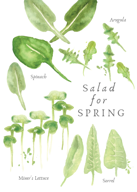 Spring Salad Greeting Card