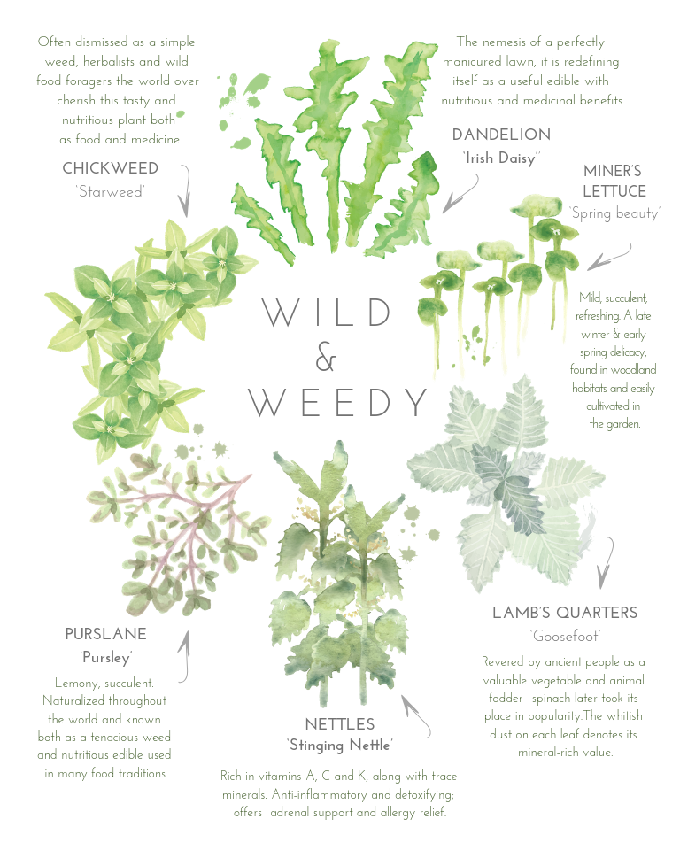 Wild & Weedy poster
