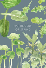 Harbingers of Spring greeting card