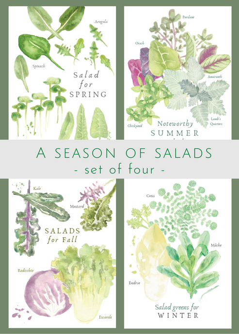 A Season Salads, set of 4
