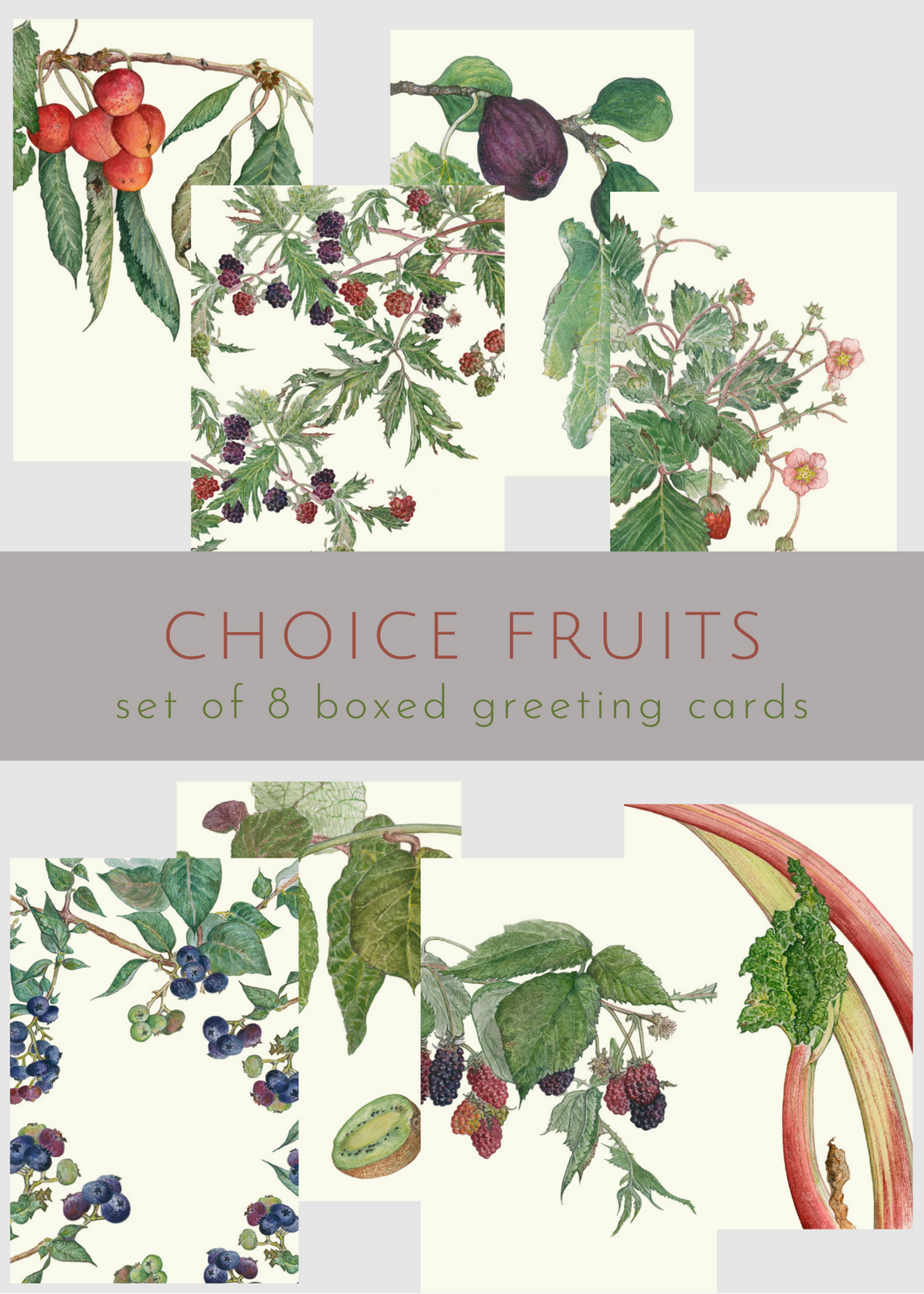 Choice Fruits—boxed set of 8