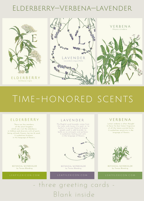 Time-Honored Scents